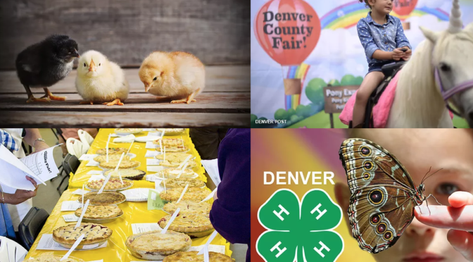 Denver County Fair: Call out for vendors!